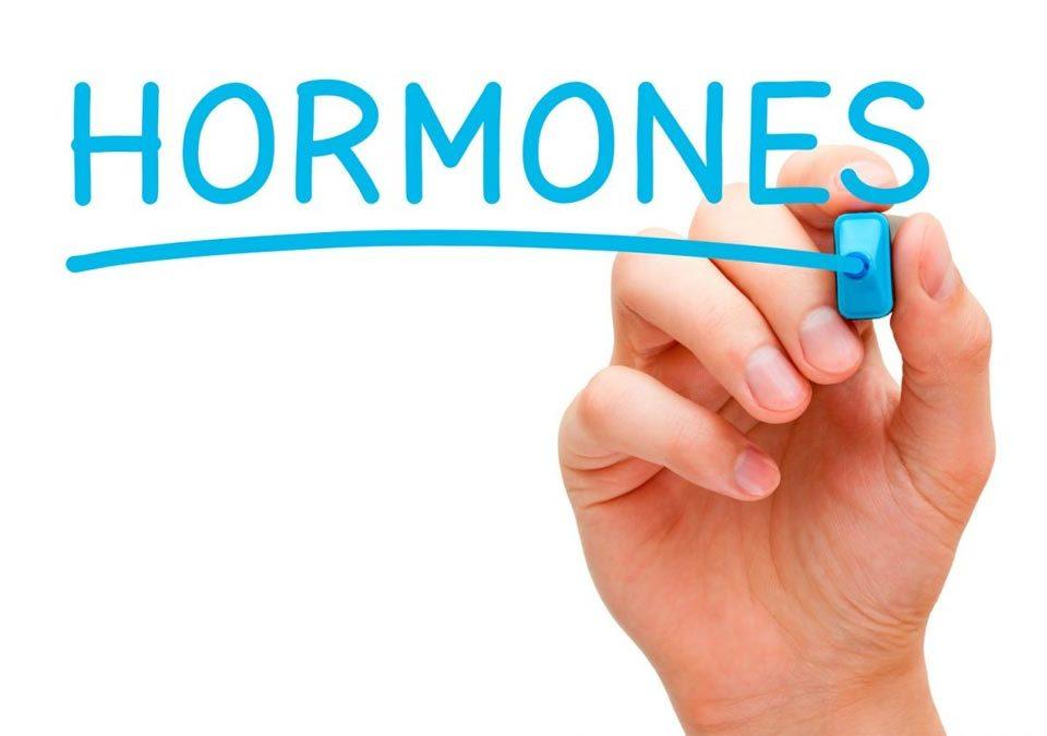 Imagen con texto hormonas escrito